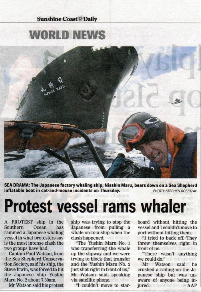 A scanned Sunshine Coast Daily news article showing a Sea Shepherd activist wearing a National Geographic Collection Original Buff® to seal of his jacket collar during an encounter with the japanese whaling vessel Nisshin Maru